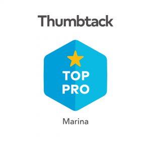 Top-Pro-Badge